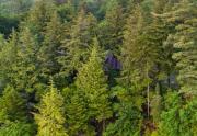 193_pine_acres_2 (1)